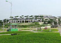 Trồng cây xanh tại Park City Hà Nội