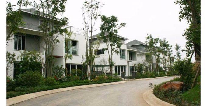 Trồng cây xanh tại khu đô thị Ecopark Hưng yên.