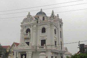 Trồng Cây Bơ Cổ thụ tại Quảng Ninh.